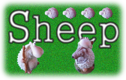 Sheep: The Board Game